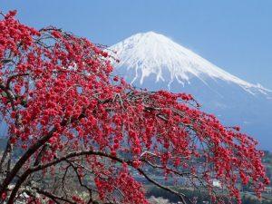 Достопремечательности Японии